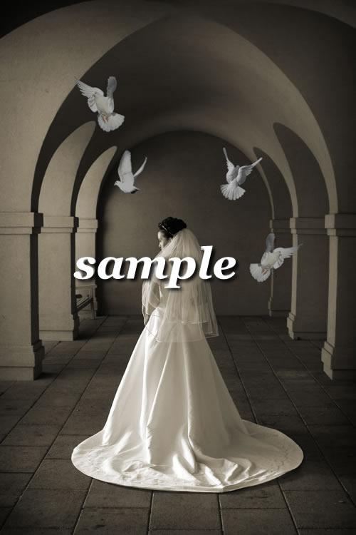 Bride & Doves - Indoor - Back View