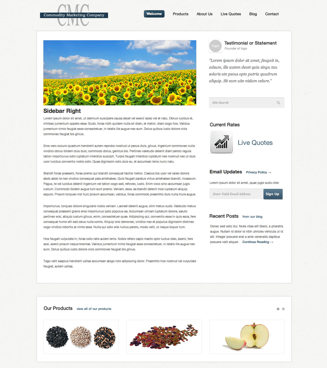 Commodity Marketing Website Design Basic Page