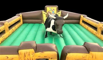 Regular Mechanical Bull: