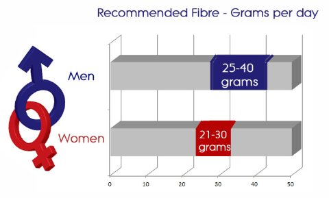 recommended daily fibre intake