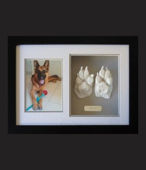 pet and animal paw casting plaster by cast a memory australia