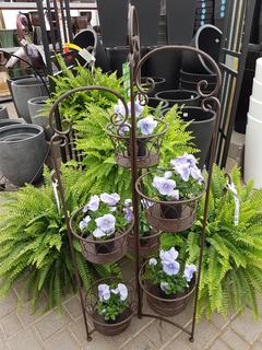 Lotus plant stand