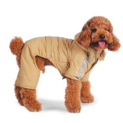beige grey water proof heavy bomber jumper for dogs