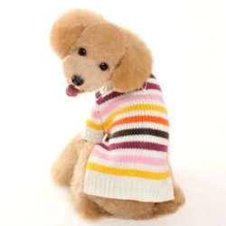 colorful striped dog sweater