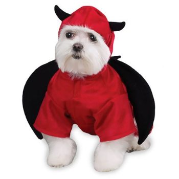 red and black winged Devil costume for dogs