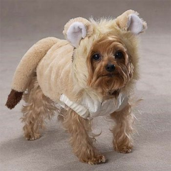 face framing hood features a long, fluffy mane and stand-up ears lion costume for dogs