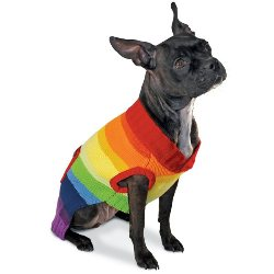 rainbow striped dog sweater