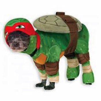 Teenage Mutant Ninja Raphael Halloween Costume
