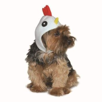 Rooster Hat with velcro closure for dogs