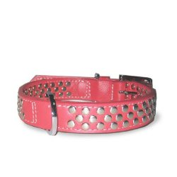 dogo design red stud dog collar