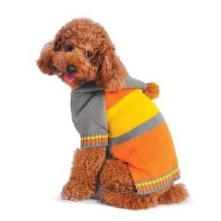 orange striped with pom pom's sporty dog sweater