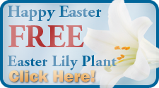 easter lily sign up