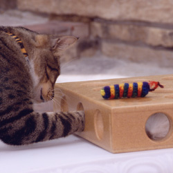 Peek-A-Prize Cat Toy Box