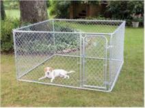 PetSafe 7-1/2'x7-1/2'x4' Box Dog Kennel & Dog Pen