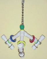 Parrot Party Small Tri-Fun Forever Bird Toy
