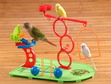 Natures Instinct Birdie Basketball and Training Gym for small birds