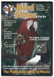 The Bird Sitter DVD for pet birds